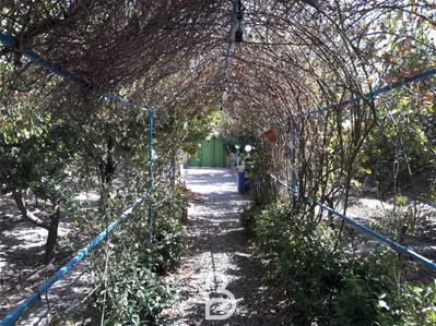 باغ ویلای 450 متری قبچاق