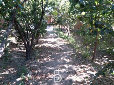 باغچه 1200 متری صفادشت یوسف اباد