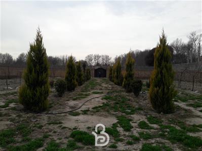 باغ ۲۳۴۰متری کوشک