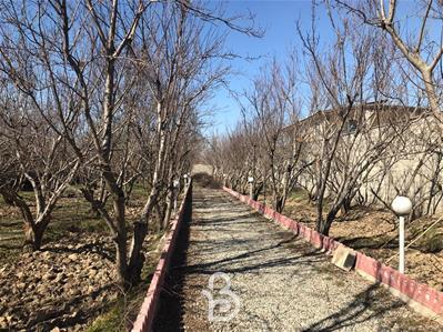باغ خام 4 دیوار ابراهیم اباد