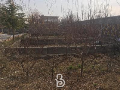 400متر باغ چهار دیواری در لم آباد